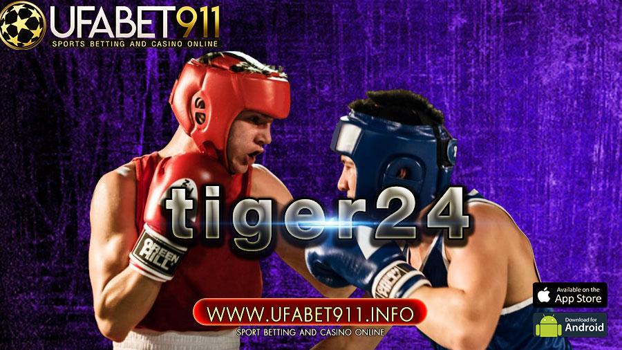 tiger24